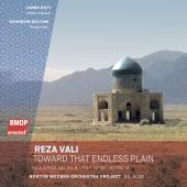 Reza Vali: Toward That Endless Plain