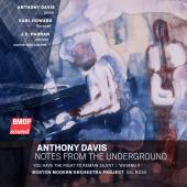 Anthony Davis: Notes from the Underground
